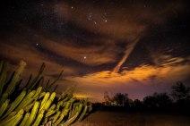 nightpic